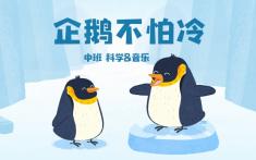 中班-企鹅不怕冷