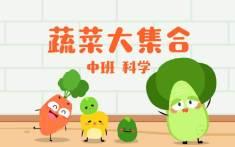 蔬菜大集合